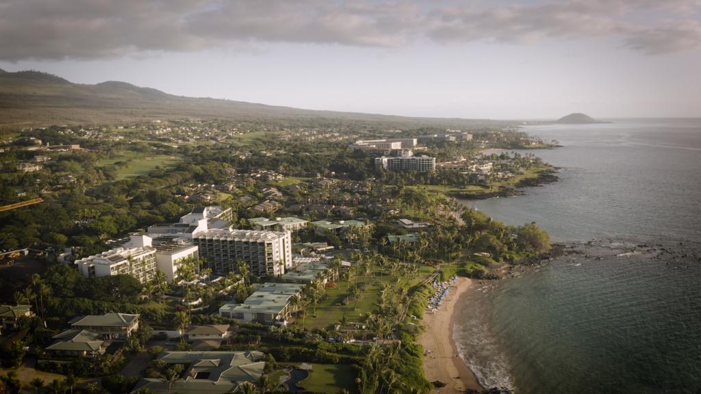 Maui Drone Wedding Venue
